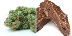 Edibles vs Smoking: Effects and Differences