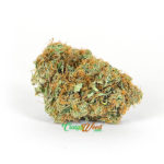 Sativa-weed-strain-(GOLDEN-GOAT)